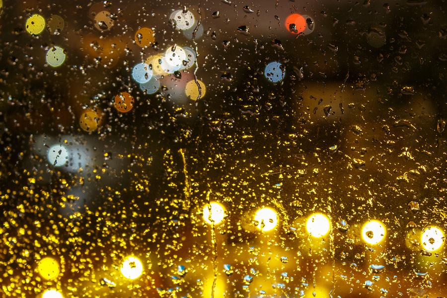 Rainy Summer Days